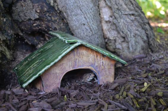Toad House 2